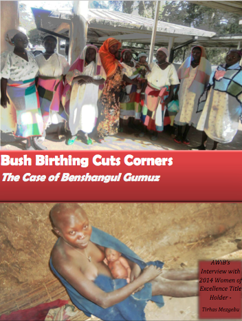 Bush Birthing Cuts Corners